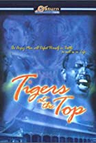 Image of Tigers at the Top