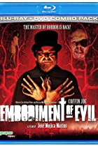 Image of Embodiment of Evil