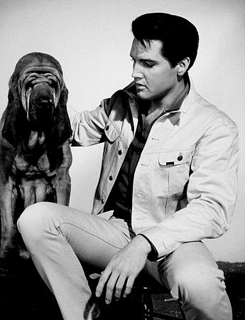 Elvis Presley in a publicity still for