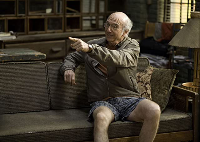 Larry David in Whatever Works (2009)