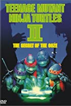Image of Teenage Mutant Ninja Turtles II: The Secret of the Ooze