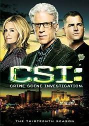 CSI - Season 8 poster