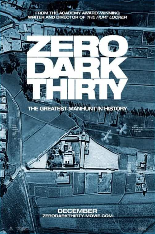 Zero Dark Thirty 2012 Hindi Dual Audio 720p BluRay full movie watch online freee download at movies365.ws