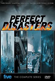 Perfect Disaster Poster