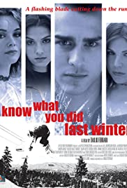 I Know What You Did Last Winter Poster