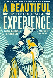A Beautiful Fucking Experience Poster