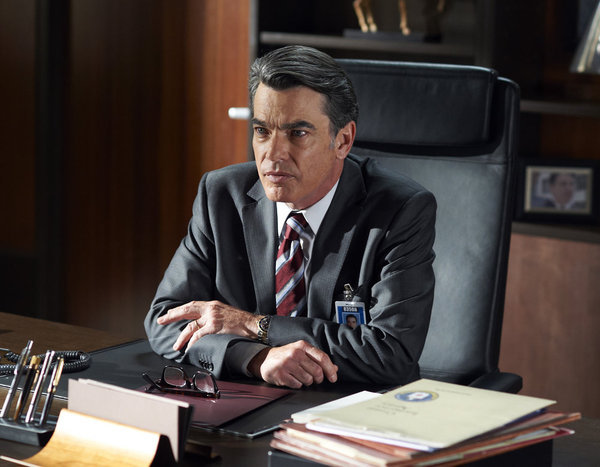 Peter Gallagher in Covert Affairs (2010)