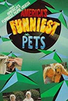 Image of America's Funniest Pets