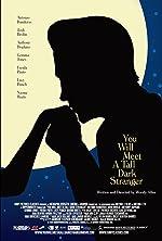 You Will Meet a Tall Dark Stranger(2010)