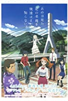 Image of Anohana: The Flower We Saw That Day: Ano Natsu ni Saku Hana