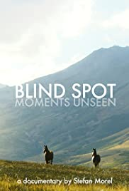 Blind Spot: Moments Unseen Poster