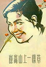 Kun lun shan shang yi ke cao