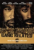 Image of Gang Related