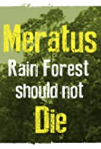 Primary image for Meratus Rain Forest Should Not Die