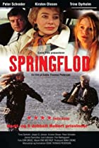 Image of Springflod
