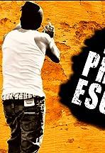 Easy Prison Escape