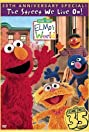 Sesame Street Presents: The Street We Live On (2004) Poster