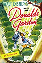 Image of Donald's Garden