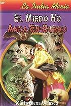 Image of El miedo no anda en burro