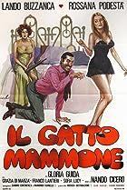 Image of Il gatto mammone