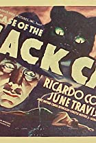 Image of The Case of the Black Cat