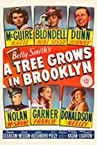A Tree Grows in Brooklyn (1945) Poster