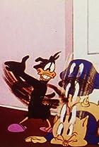 Image of Riff Raffy Daffy