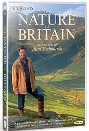 Island Britain Poster