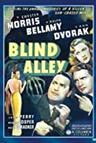 Image of Blind Alley