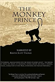 The Monkey Prince Poster