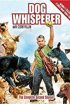 Image of Dog Whisperer with Cesar Millan