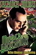 Image of Murder at the Baskervilles