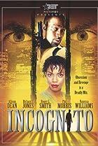 Image of Incognito