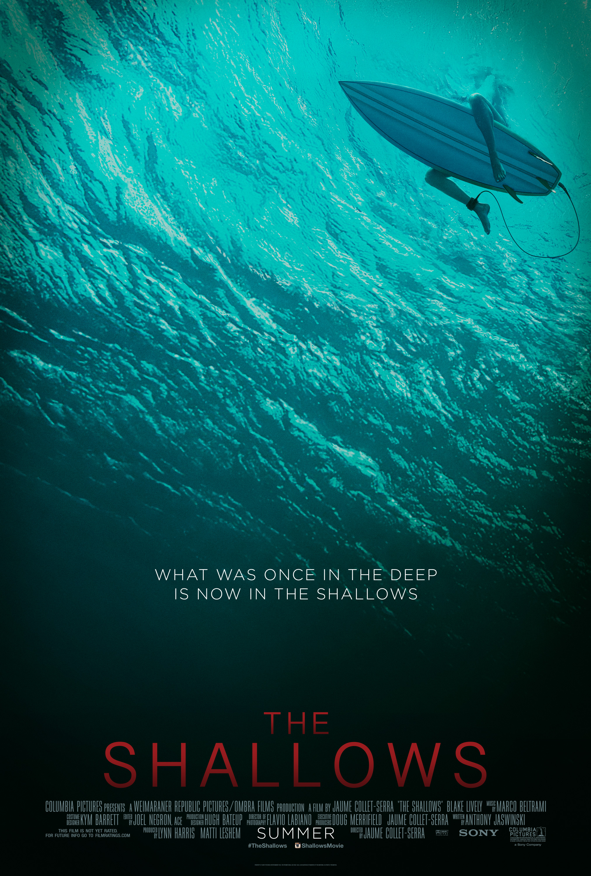 The Shallows 2016 Hindi Dubbed