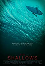 Primary image for The Shallows
