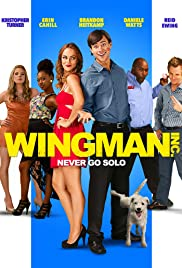 Wingman Inc. (2015) Poster - Movie Forum, Cast, Reviews