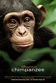 Chimpanzee (2012) Poster - Movie Forum, Cast, Reviews