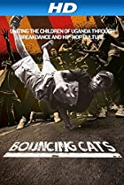 Image of Bouncing Cats