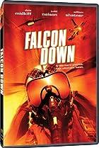 Image of Falcon Down