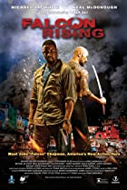Image of Falcon Rising
