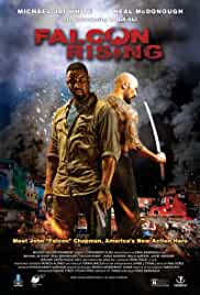Falcon Rising film poster