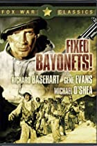 Image of Fixed Bayonets!