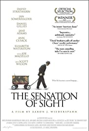 The Sensation of Sight(2006) Poster - Movie Forum, Cast, Reviews