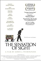 The Sensation of Sight (2006) Poster