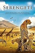 Image of Serengeti