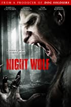 Image of Night Wolf