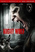 Image of Night Wolf