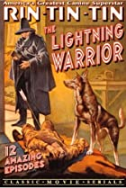 Image of The Lightning Warrior
