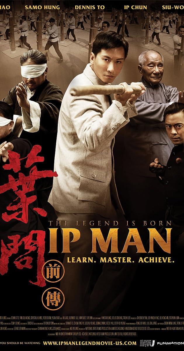 Ip Man 2010 BRRip