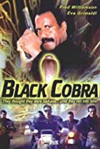Image of Cobra nero